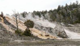 Wasserfall der heißen Quellen in Yellowstone Nationalpark Lizenzfreies Stockbild