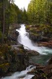 Wasserfall, der unter hohen Bauhölzern kaskadiert Lizenzfreies Stockbild