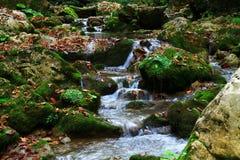Wasserfall in der Waldherbstansicht lizenzfreie stockbilder