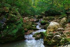 Wasserfall in der Waldherbstansicht lizenzfreies stockfoto