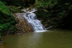 Wasserfall in der Waldherbstansicht stockbild