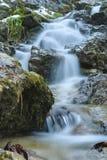 Wasserfall in der wilden Natur Stockfotos