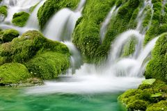 Wasserfall des natürlichen Frühlinges Stockfotografie