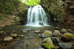 Wasserfall des neuen Grüns Stockfoto