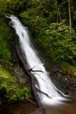Wasserfall in Deutschland Lizenzfreie Stockfotos