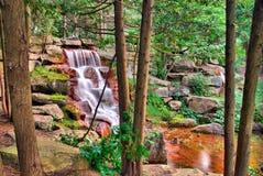 Wasserfall durch die Bäume Stockfotos