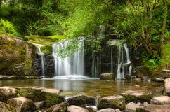 Wasserfall in einem Holz Stockbild