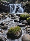 Wasserfall in einem tropischen Wald lizenzfreie stockbilder
