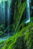Wasserfall in einem Wald Stockfotos