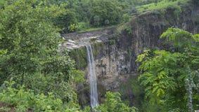 Wasserfall in einem Wald Stockfotografie
