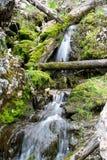 Wasserfall für Feen Lizenzfreie Stockfotos
