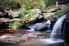 Wasserfall in forrest Stockfotos