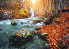 Wasserfall in Gebirgsfluss im Herbstwald bei Sonnenuntergang lizenzfreie stockfotos