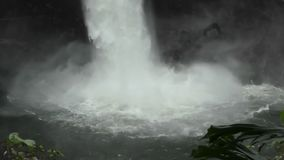 Wasserfall in Hawaii stock video footage