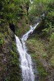 Wasserfall in Hawaii Stockfoto