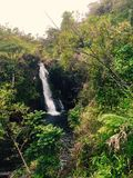 Wasserfall in Hawaii Stockfoto