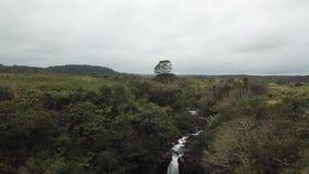 Wasserfall-Hawaii-Vogelperspektive stock footage