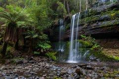 Wasserfall herein Stockbilder