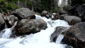 Wasserfall, hohes Tatras in Slowakei Europa stock video