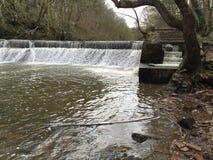 Wasserfall in Humpford-Holz Northumberland Lizenzfreies Stockbild