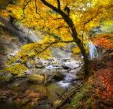 Wasserfall im autumn-4 Lizenzfreie Stockfotografie