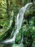 Wasserfall im Basisrecheneinheitstal Stockfotos