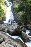 Wasserfall im Dschungel Stockfotografie
