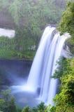 Wasserfall im Dschungel Stockbild