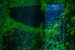 Wasserfall im Dschungel war dicht stockfotografie