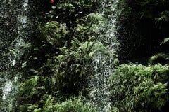 Wasserfall im Dschungel war dicht lizenzfreies stockfoto