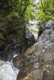 Wasserfall im dschungle von Panama Stockfotografie