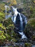 Wasserfall im Fall Lizenzfreies Stockbild