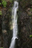 Wasserfall im Frühjahr lizenzfreies stockfoto