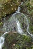 Wasserfall im Frühjahr stockfotografie