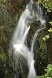 Wasserfall im Frühjahr stockbild