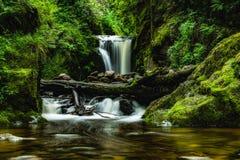 Wasserfall im Frühjahr Stockbilder
