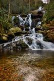 Wasserfall im Früjahr Lizenzfreie Stockbilder