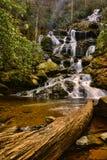 Wasserfall im Früjahr stockfotografie