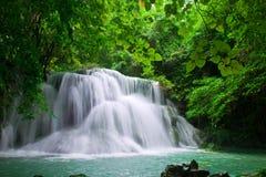 Wasserfall im frischen grünen Wald Stockbild