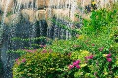 Wasserfall im Garten lizenzfreie stockbilder