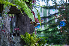 Wasserfall im Garten stockfotografie