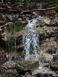 Wasserfall im Gebirgswald mit klarem Wasser Lizenzfreies Stockbild