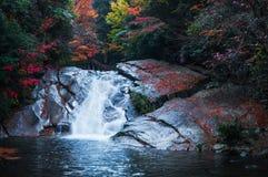 Wasserfall im goldenen Fallwald lizenzfreies stockbild