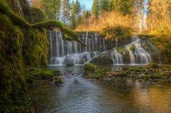 Wasserfall im Grün Lizenzfreies Stockfoto