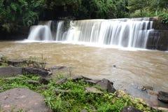 Wasserfall im grünen Wald Stockbilder