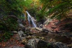 Wasserfall im grünen Wald stockbild