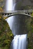 Wasserfall im Herbst Stockbilder