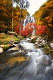 Wasserfall im Herbst Stockfotos