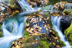 Wasserfall im Herbst lizenzfreie stockbilder
