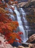 Wasserfall im Herbstwald Lizenzfreies Stockfoto